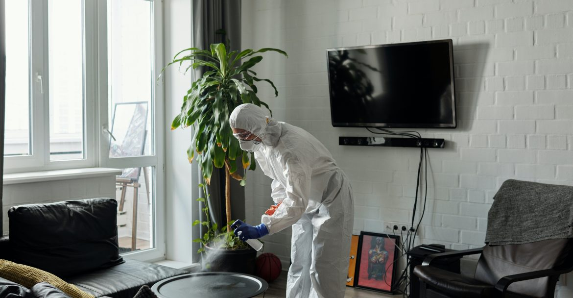 Easy Tips for Finding A House Cleaner